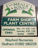 Wayford Nurseries - Stalham